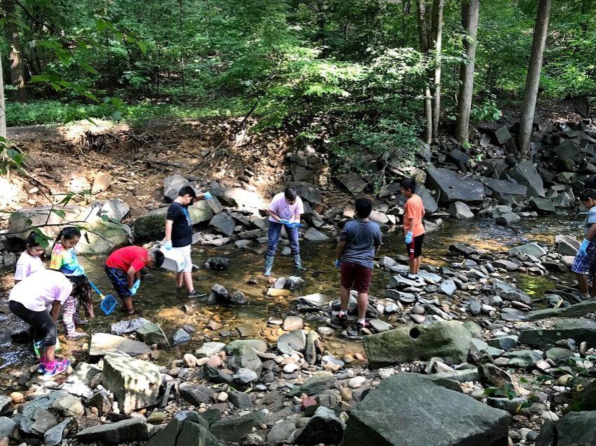 Sinh viên khám phá Lubber Run Stream