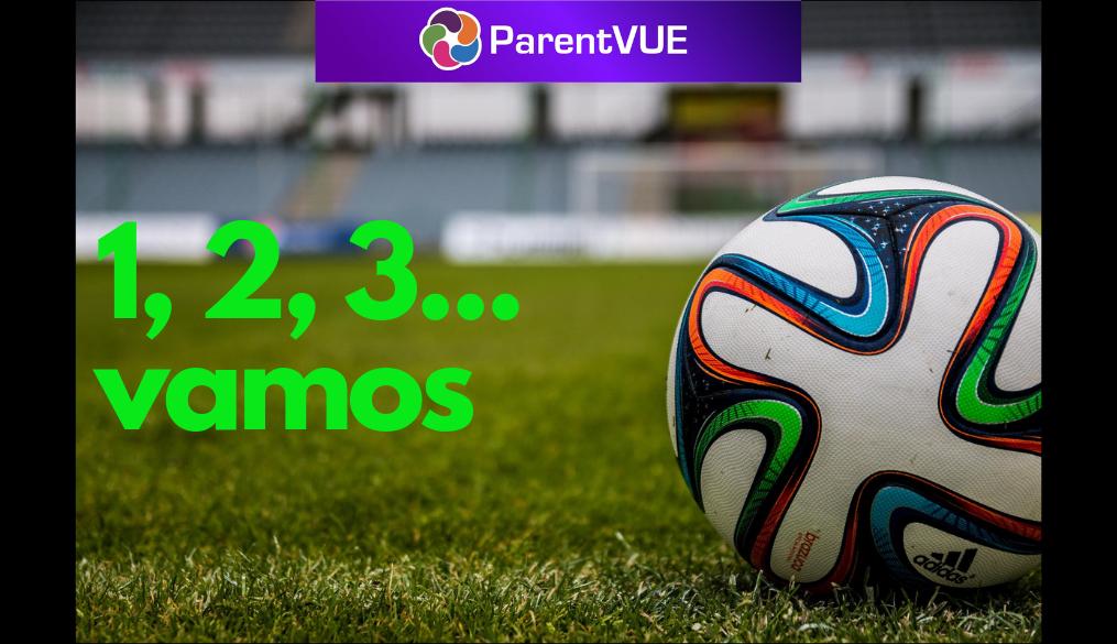spanish soccer ball graphic