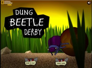 Dung Beetle Derby graphic