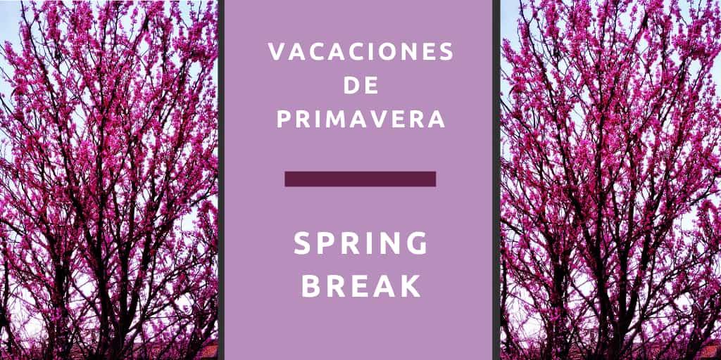 Spring Break – vacaciones de primavera